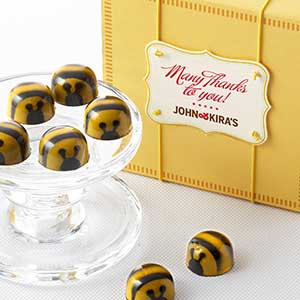 Chocolate Honey Caramel Bees 9pc - Thank You