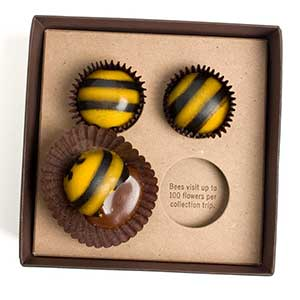 Chocolate Honey Caramel Bees