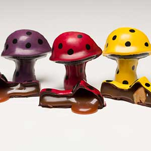 Magical Mushrooms Pieces