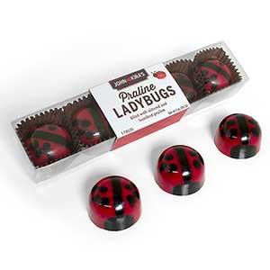 Praline Red Ladybug Chocolates 5pc