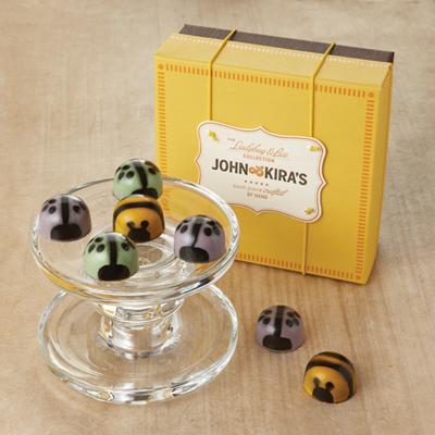 Spring Ladybugs & Bees 9pc