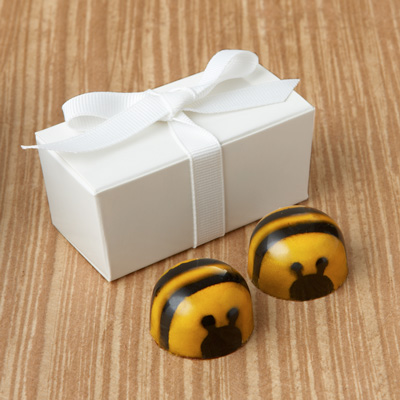 Bee Favor 2pc: Choice