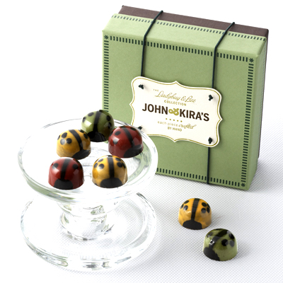  Chocolate Ladybug Medley 9pc