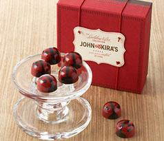 Red Ganache Ladybugs 9pc-Congrats