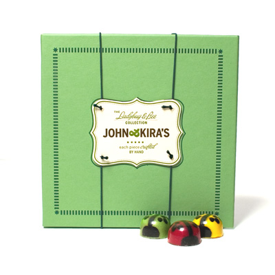 Chocolate Ladybug Medley 9pc- Birthday