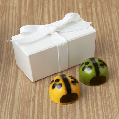  Ladybug Favor 2pc: Choice