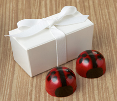  Lovebug Favor 2pc: Choice