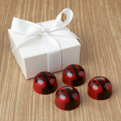 Lovebug Favor 4pc: Choice